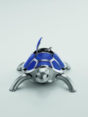 Tortue-bleue-face